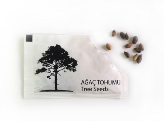 Promotional, promotional products, gift, gift products, promotional seed pens, recycled products, tree sapling, promotion tree sapling, promotional seedlings, saplings plant, live plant, promotion live plant